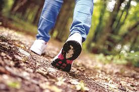 Alternatieve wandel-3-daagse